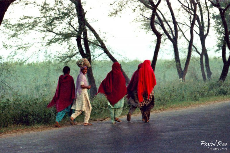 Rural women (Punjab 1988)