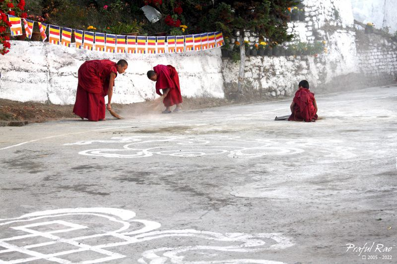 Young Monks, TharpaCholing Monastery